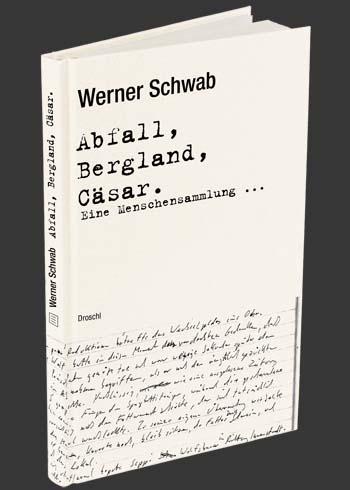 Schwab-Abfall-Bergland_693